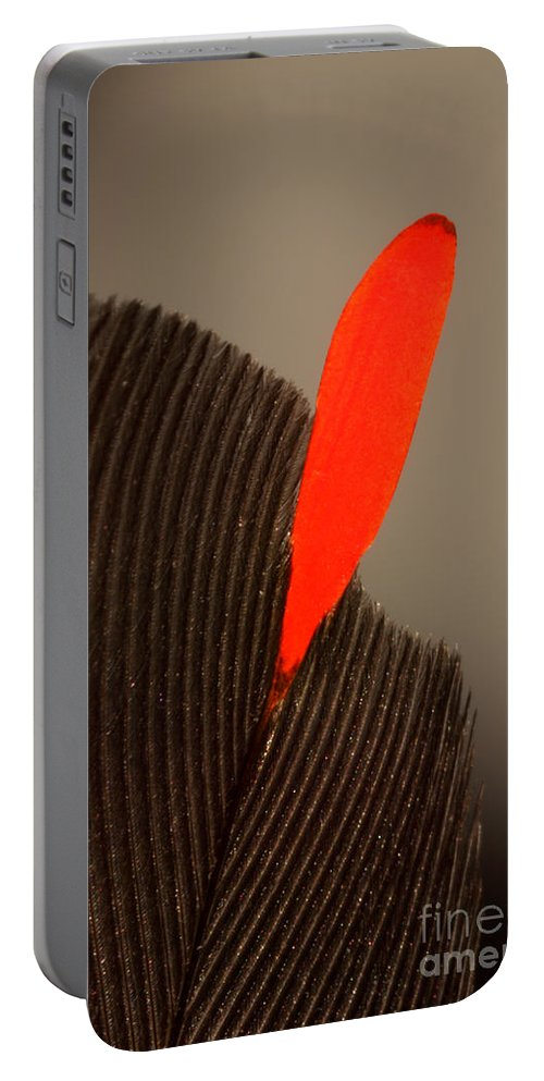Bombycilla Cedrorum Portable Battery Charger featuring the photograph Cedar Waxwing Feather by Ted Kinsman