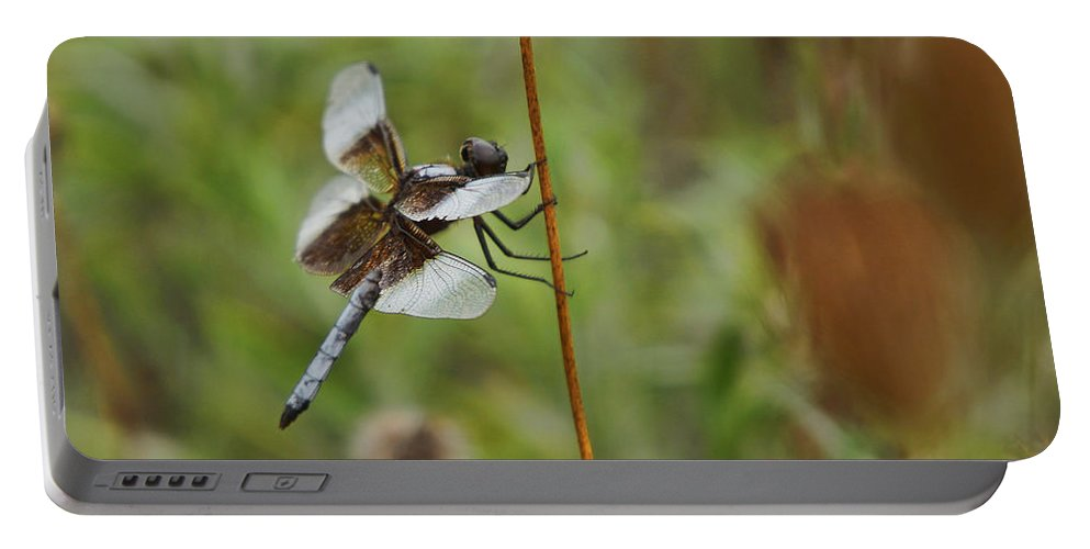 Dragonfly Portable Battery Charger featuring the photograph Dragonfly by Alan Hutchins