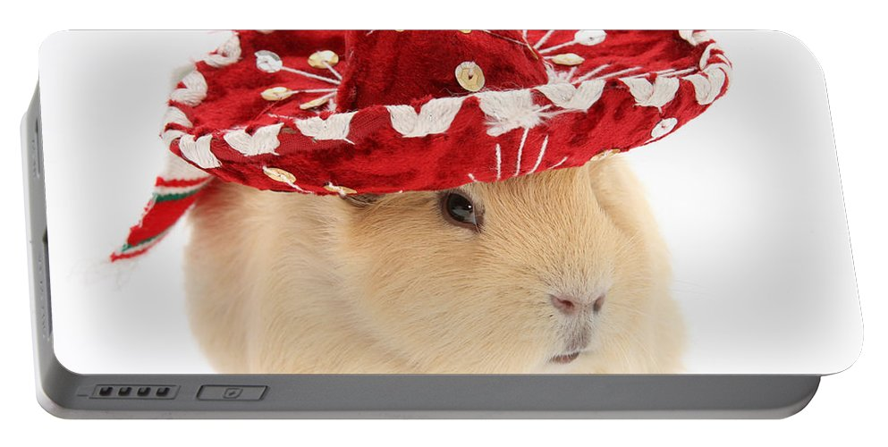 Animal Portable Battery Charger featuring the photograph Guinea Pig Wearing A Hat by Mark Taylor