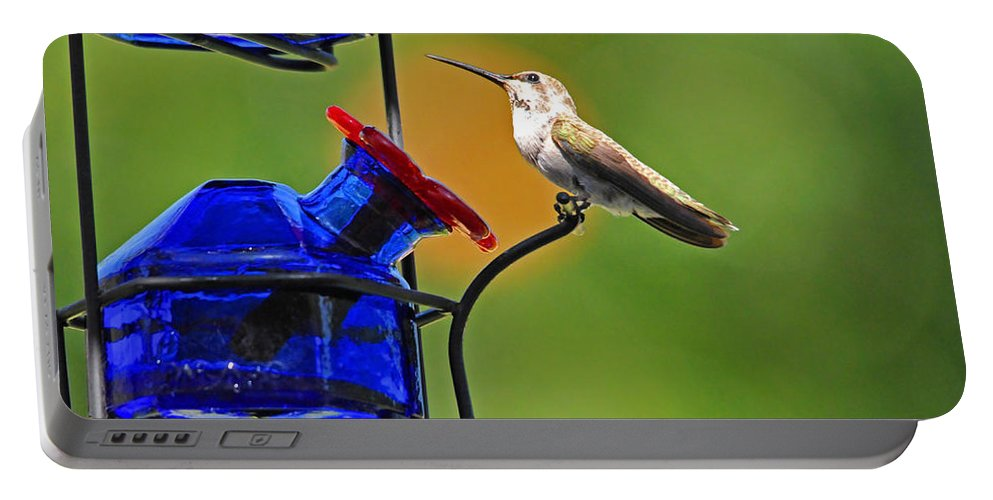 Hummers Portable Battery Charger featuring the photograph Hummer At The Feeder by Lynn Bauer