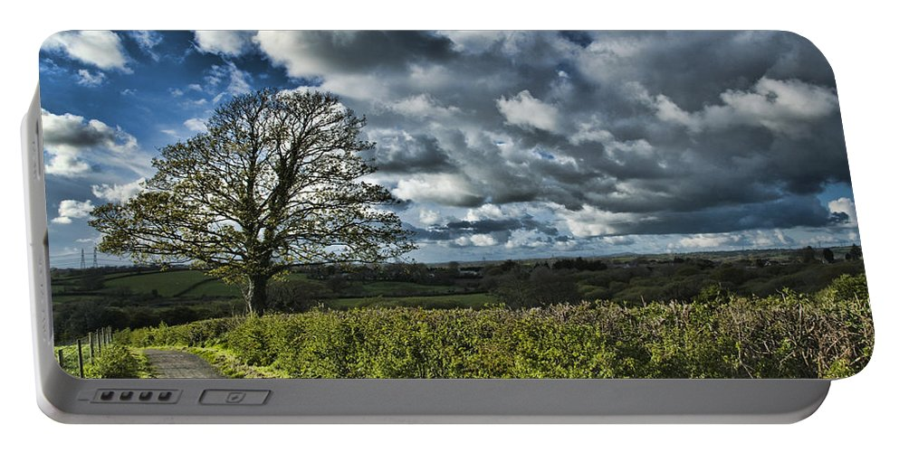 Sycamore Tree Portable Battery Charger featuring the photograph Sycamore Tree by Steve Purnell