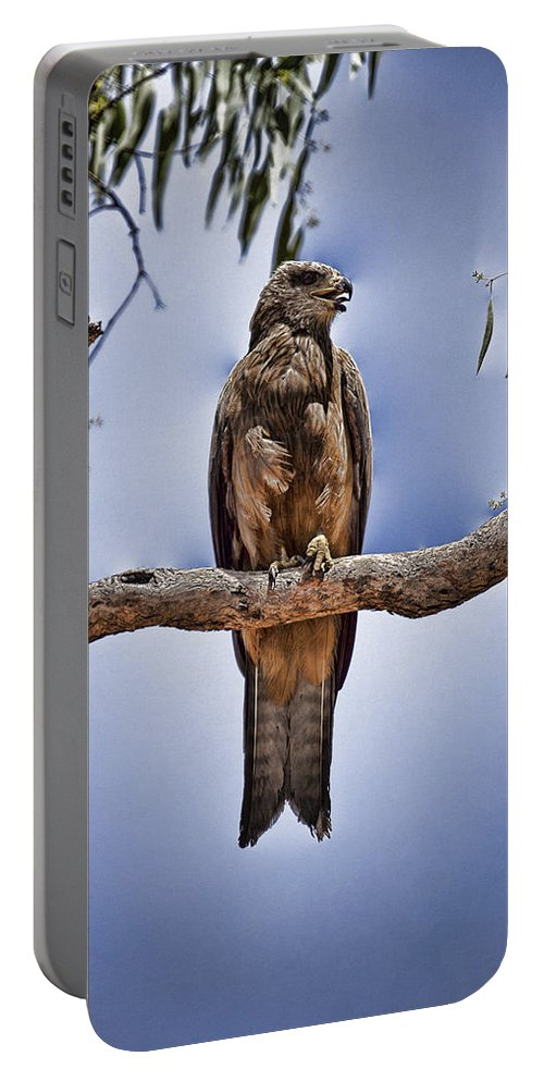 Kite Portable Battery Charger featuring the photograph Vantage Point V4 by Douglas Barnard