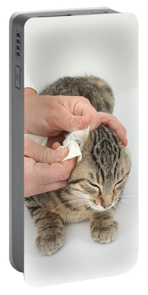 Nature Portable Battery Charger featuring the photograph Vet And Kitten by Mark Taylor