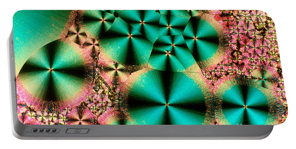 Chemistry Portable Battery Charger featuring the photograph Vitamin B1 Crystal by Michael W Davidson