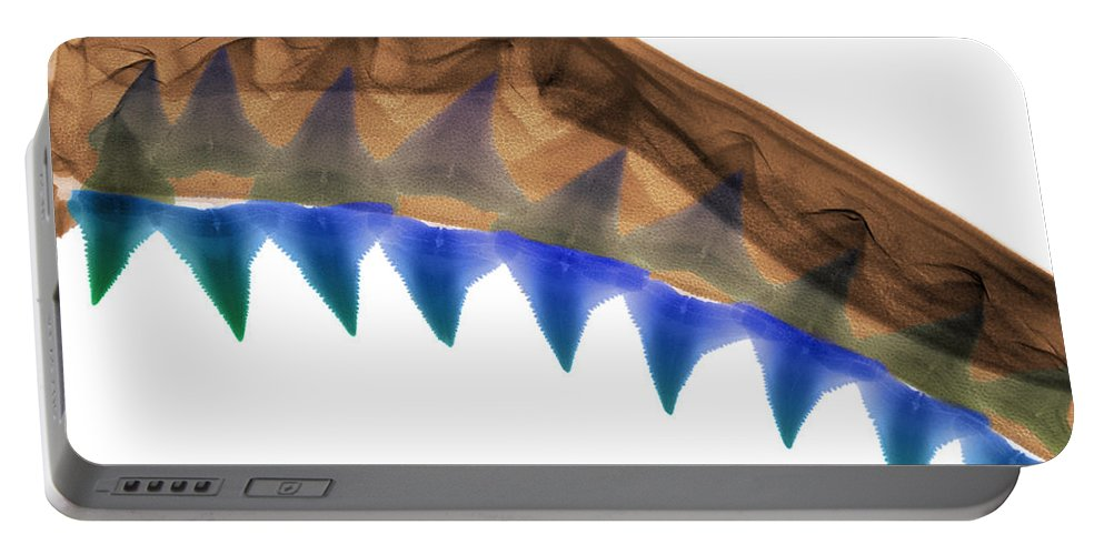 Animal Portable Battery Charger featuring the photograph X-ray Of Shark Jaws by Ted Kinsman