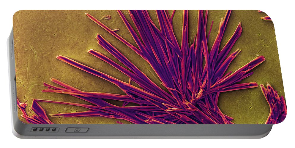 Caffeine Portable Battery Charger featuring the photograph Caffeine Crystals, Sem by Ted Kinsman