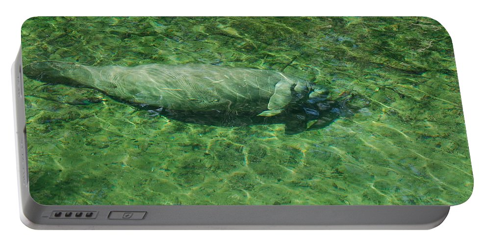 Manatee Portable Battery Charger featuring the photograph Manatee by Randy J Heath