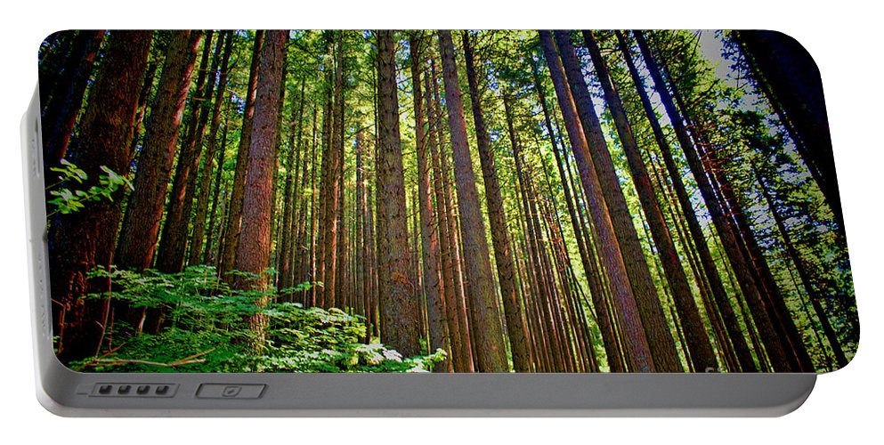 Multnomah Falls Portable Battery Charger featuring the photograph Multnomah Falls Oregon by RJ Aguilar