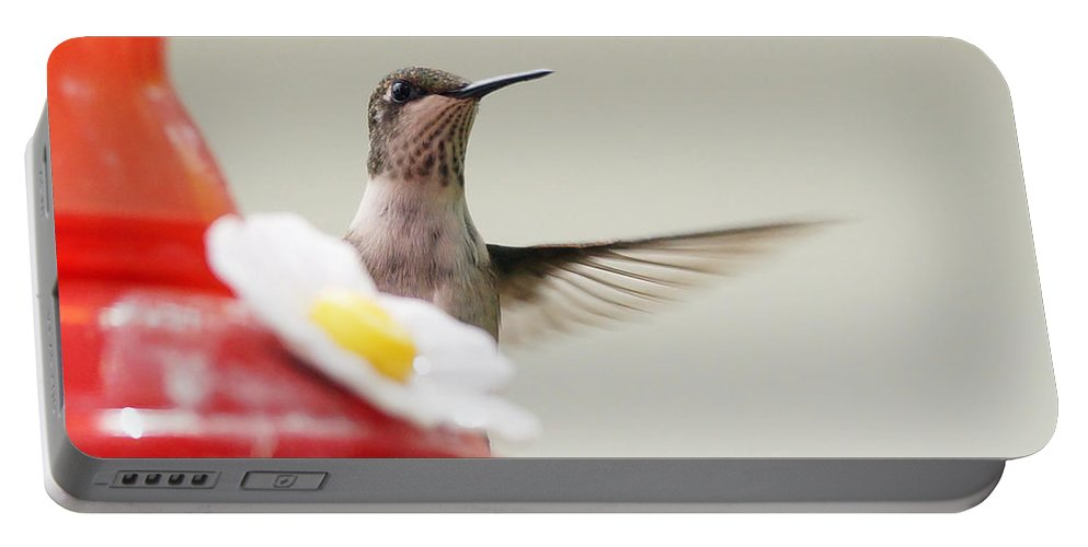 Birds Portable Battery Charger featuring the photograph Peak by Lori Tordsen