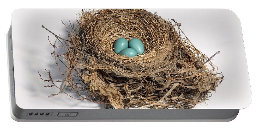 American Robin Portable Battery Charger featuring the photograph Robins Nest With Eggs by Ted Kinsman