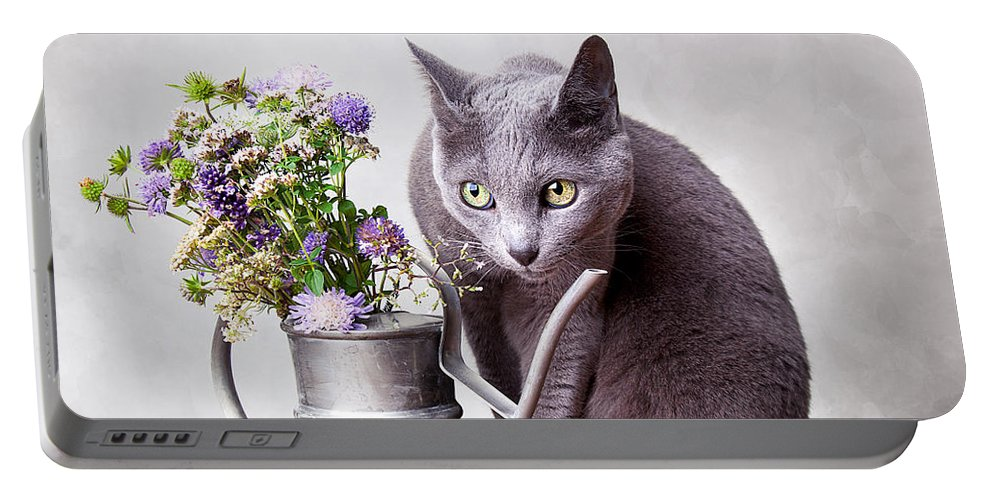 Cat Portable Battery Charger featuring the photograph Russian Blue by Nailia Schwarz