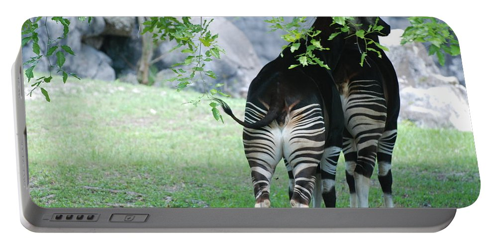 Animal Portable Battery Charger featuring the photograph Two Stripes by Rob Hans