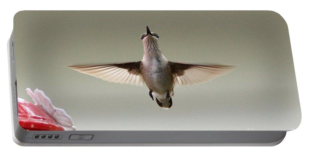 Hummingbird Portable Battery Charger featuring the photograph Hummingbird by Lori Tordsen