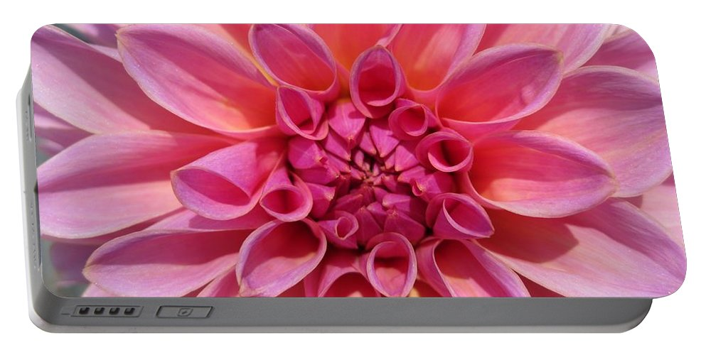 Dahlia Portable Battery Charger featuring the photograph Dahlia Named Lucky Number by J McCombie
