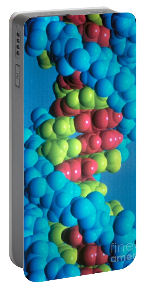 Biology Portable Battery Charger featuring the photograph Dna by Science Source
