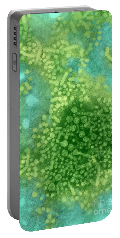 Transmission Electron Micrograph Portable Battery Charger featuring the photograph Hepatitis B Tem by Science Source