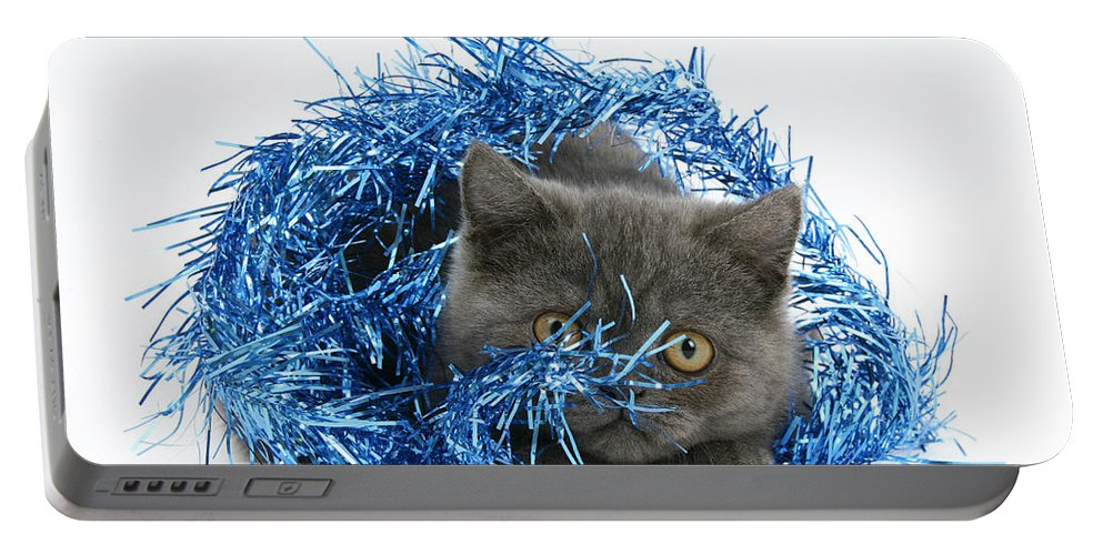 Animal Portable Battery Charger featuring the photograph Kitten With Tinsel by Mark Taylor