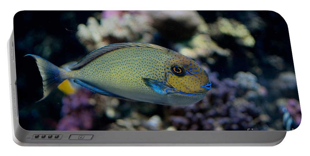 Aquarium Portable Battery Charger featuring the digital art Tropical Fish by Carol Ailles