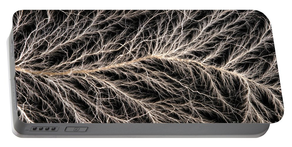 Lichtenberg Figure Portable Battery Charger featuring the photograph Electrical Discharge Lichtenberg Figure by Ted Kinsman