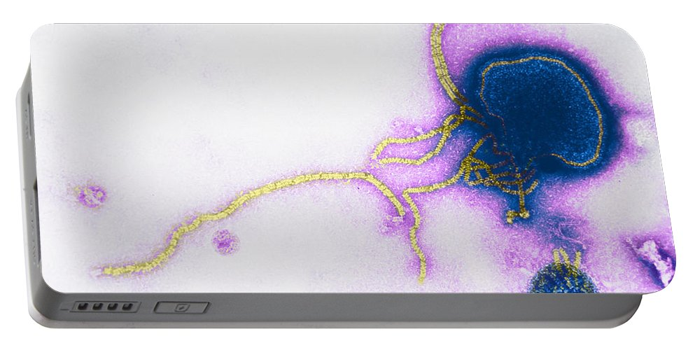Transmission Electron Micrograph Portable Battery Charger featuring the photograph Parainfluenza Virus by Science Source