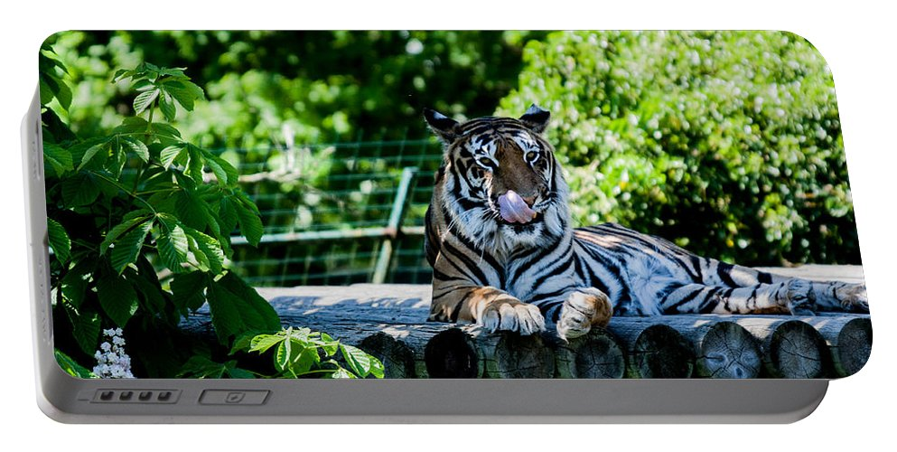 Dawn Oconnor Dawnoconnorphotos@gmail.com Portable Battery Charger featuring the photograph Tiger by Dawn OConnor