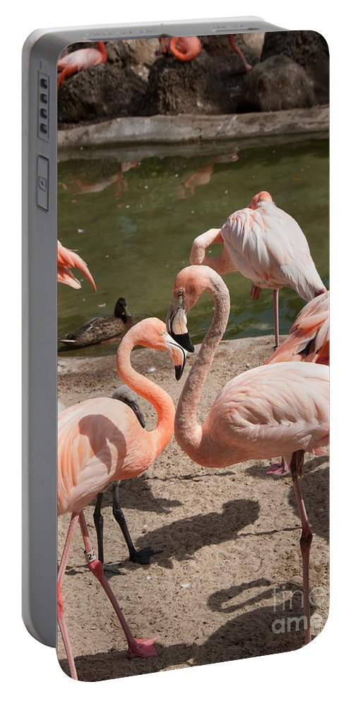 Animals Portable Battery Charger featuring the digital art Flamingos by Carol Ailles