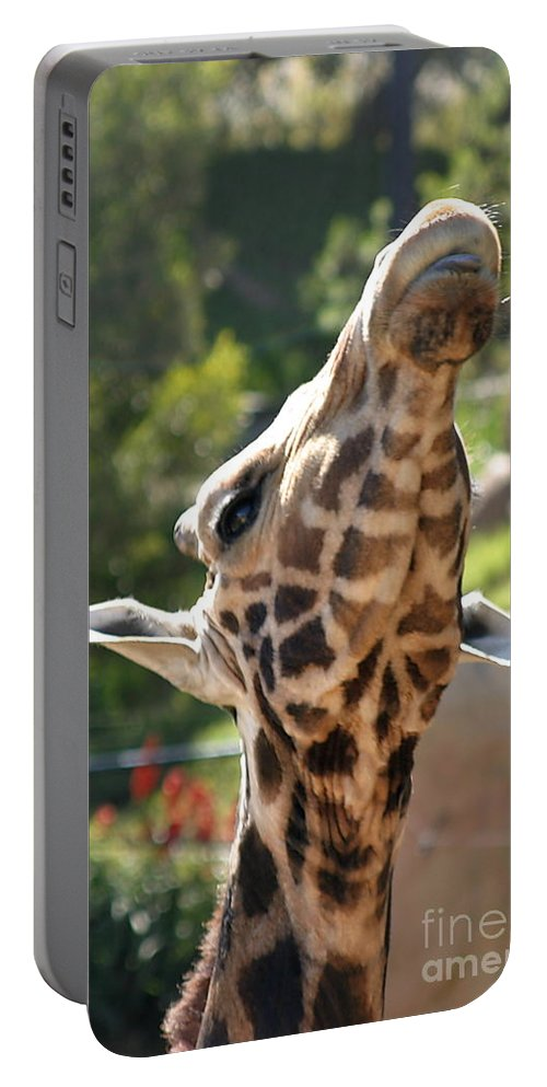 Africa Portable Battery Charger featuring the photograph Baringo Giraffe by Henrik Lehnerer