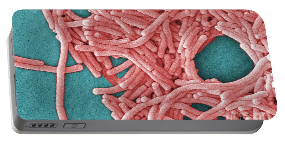 Scanning Electron Micrograph Portable Battery Charger featuring the photograph Legionella Pneumophila by Science Source