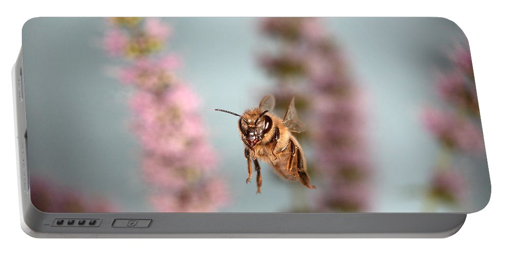 Honey Bee Portable Battery Charger featuring the photograph Honey Bee In Flight by Ted Kinsman