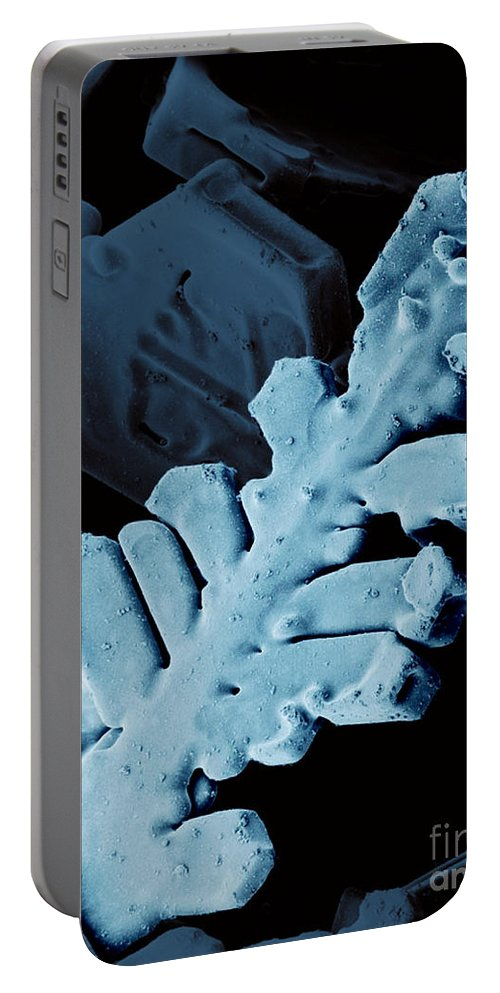 Snow Crystal Portable Battery Charger featuring the photograph Snow Crystal by Science Source