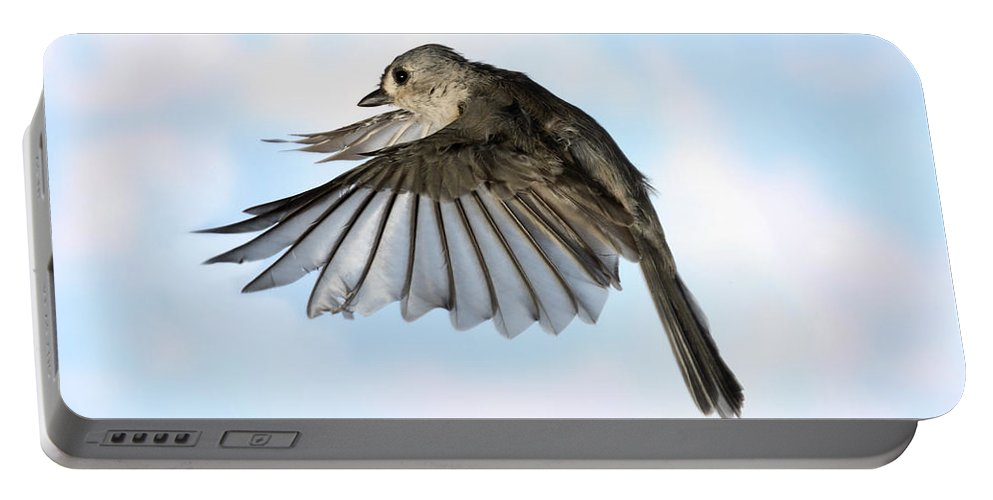 Songbirds Portable Battery Charger featuring the photograph Tufted Titmouse In Flight by Ted Kinsman