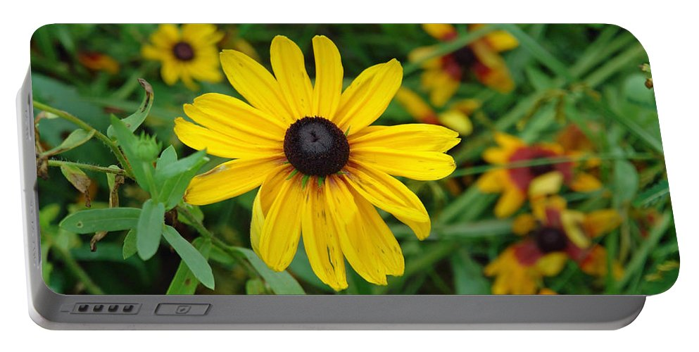 Flower Portable Battery Charger featuring the photograph A Beautiful Close Up Of A Sunflower by Ashish Agarwal