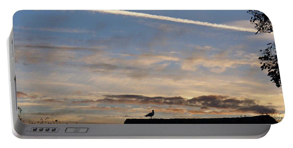 Dover Portable Battery Charger featuring the photograph A Bird Outlined Against The Setting Sky At Dover Castle by Ashish Agarwal