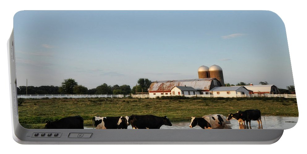 A Cow's Day At The Beach Portable Battery Charger featuring the photograph A Cow's Day At The Beach by Bill Cannon
