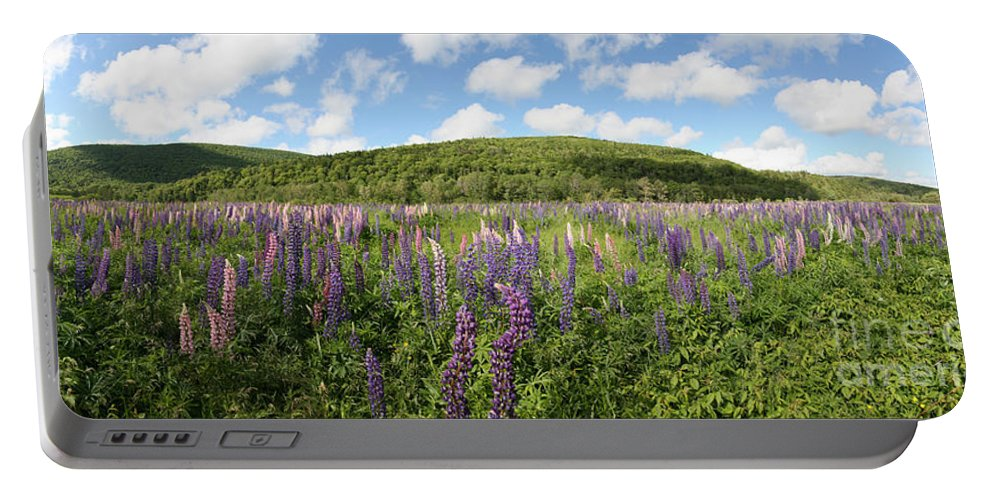 Nature Portable Battery Charger featuring the photograph A Field Of Lupines by Ted Kinsman