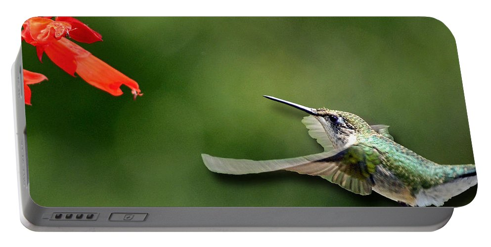 Color Photography Portable Battery Charger featuring the photograph A Hummingbird With Dimension by Sue Stefanowicz