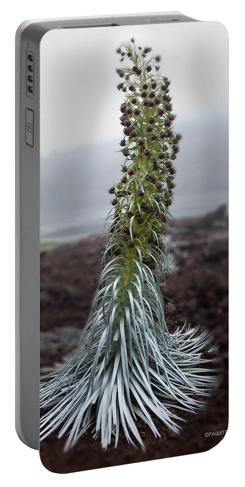 Nature Portable Battery Charger featuring the photograph A Kiss Before Dying by Paulette B Wright