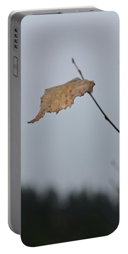 Autumn Portable Battery Charger featuring the photograph A Lonely Leaf by Michael Goyberg