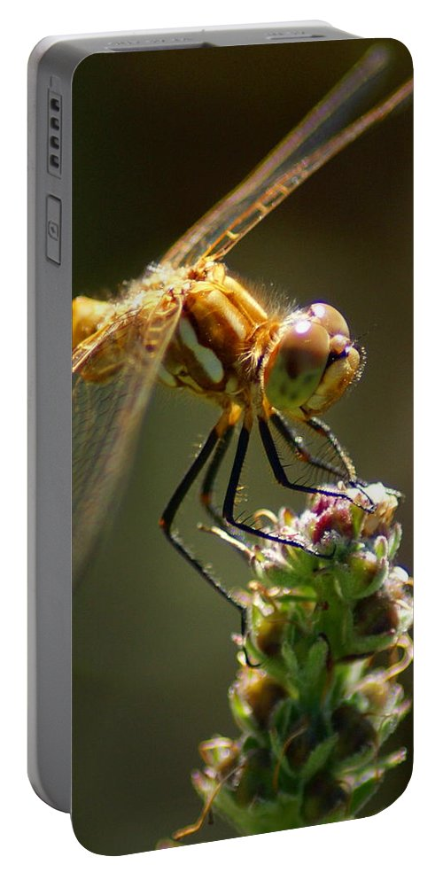Dragonflies Portable Battery Charger featuring the photograph A Moment In Time by Ben Upham III