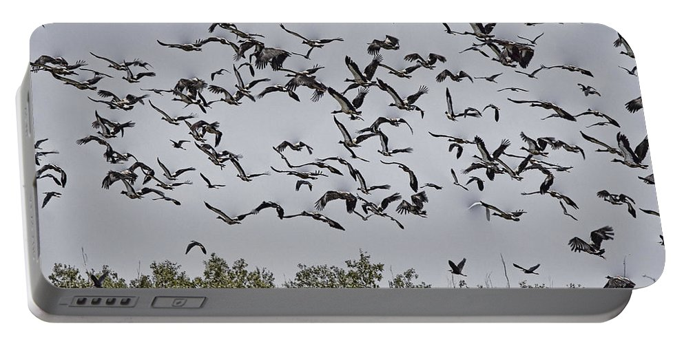 Magpie Geese Portable Battery Charger featuring the photograph A Numbers Game V3 by Douglas Barnard
