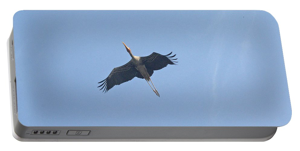 Delhi Portable Battery Charger featuring the photograph A Painted Stork Flying High In The Sky by Ashish Agarwal