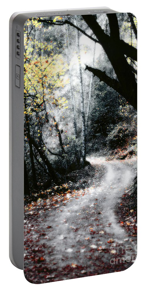 Road Portable Battery Charger featuring the photograph A Road Less Traveled by Mike Nellums