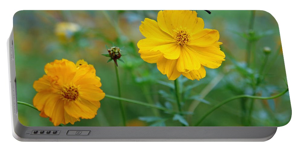Flower Portable Battery Charger featuring the photograph A Small Dragon Fly Sitting On A Yellow Flower by Ashish Agarwal