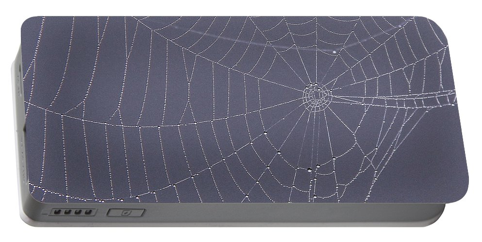 Spider Web Portable Battery Charger featuring the photograph A Spider's Handiwork by Doris Potter