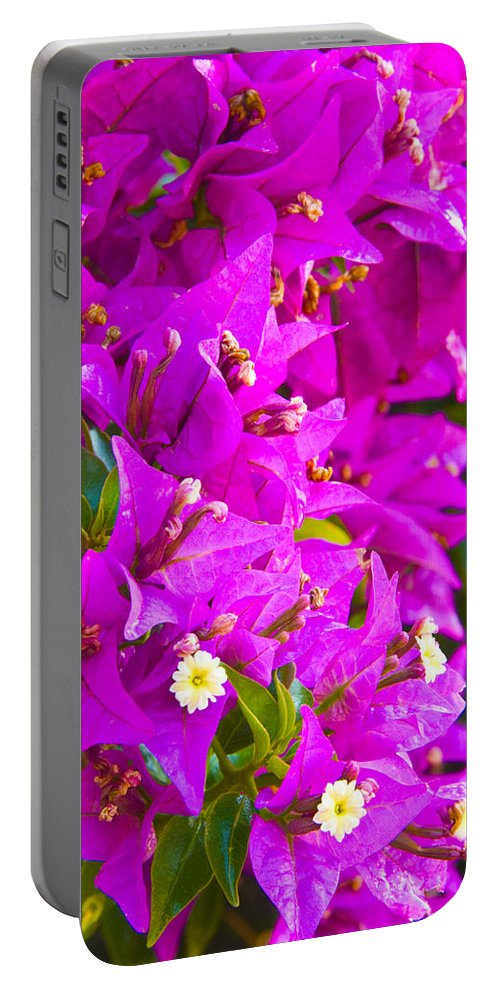 Barcelona Portable Battery Charger featuring the photograph A Wall Of Flowers by Richard Henne