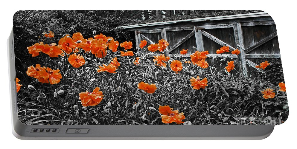 Flowers Portable Battery Charger featuring the photograph Abandoned Shed by Barbara McMahon