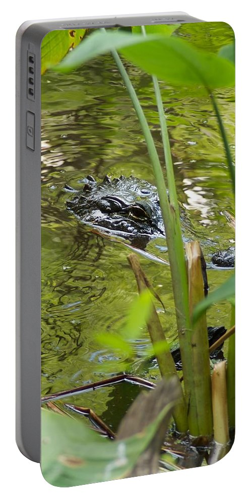 Ave Maria Portable Battery Charger featuring the photograph Accomodate by Joseph Yarbrough