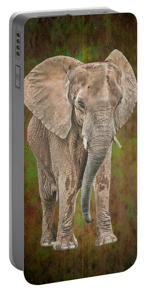 Isolated Portable Battery Charger featuring the photograph African Elephant by Rudy Umans