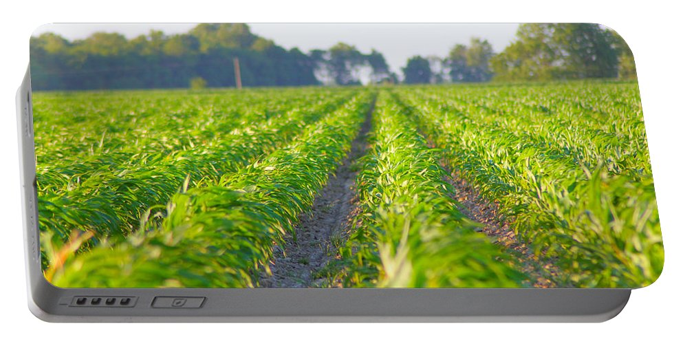 Crop Portable Battery Charger featuring the photograph Agriculture- Corn 1 by Karen Wagner