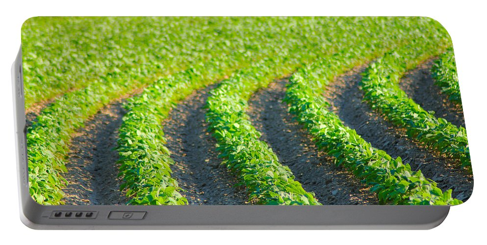 Land Portable Battery Charger featuring the photograph Agriculture- Soybeans 3 by Karen Wagner